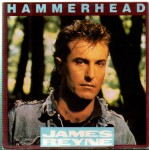 reyne-hammerhead